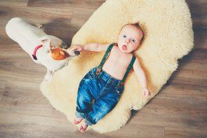 Кучето – най-добрият приятел на родителя